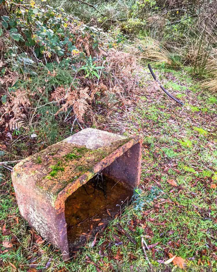 Old trough in the bush