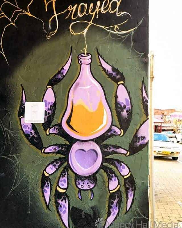 Street art spider