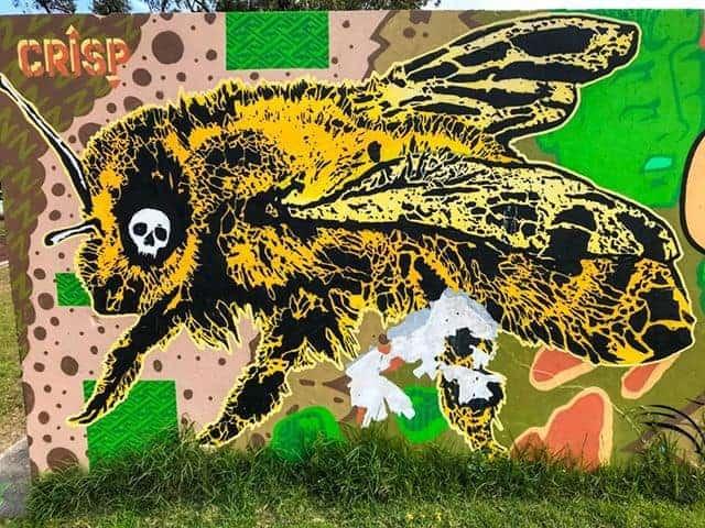 Skull bee mural