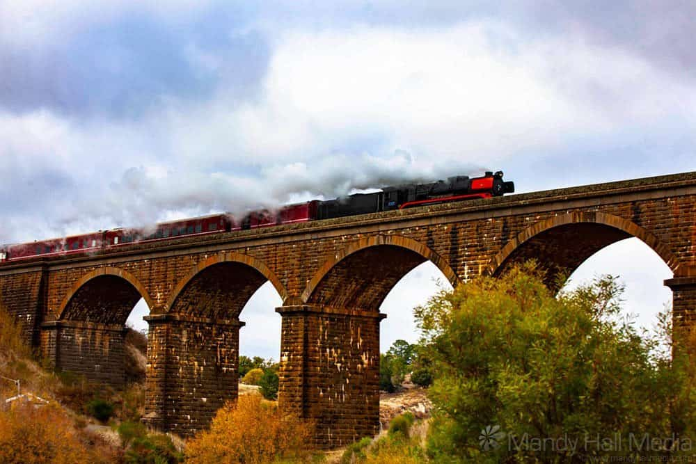 Steam Train Over Malmsbury Viaduct