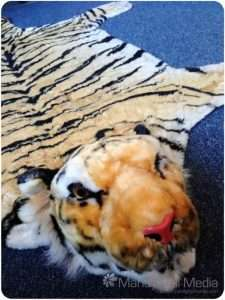 My tiger skin rug. He's called Rajah. Everyone trips over him.