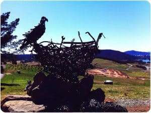 Eagle sculpture in Canberra. Nice view over the vally. You can see the scale of it fromt he size of the kid in the bottom left