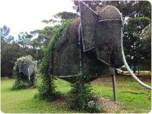 Banks Park, Sydney. Elephants
