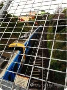 Train in a cage