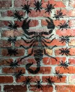 Ants and scorpion 