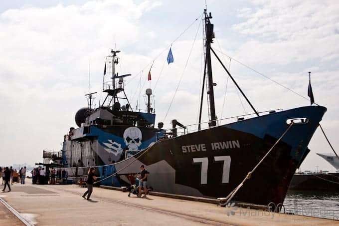 The Steve Irwin. The Sea Shepherd's most famous vessel.