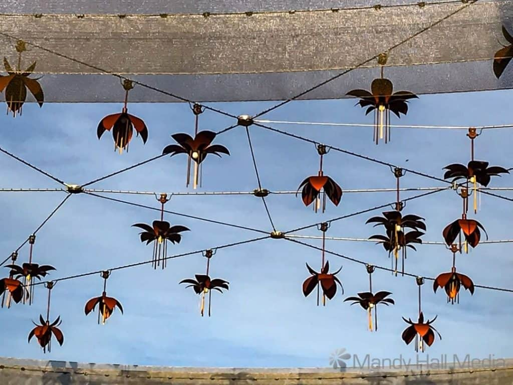 Overhead flowers