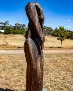 Mike Nicholls ' Gannet Gaurding ' at Art in the Vines at Hanging Rock Winery