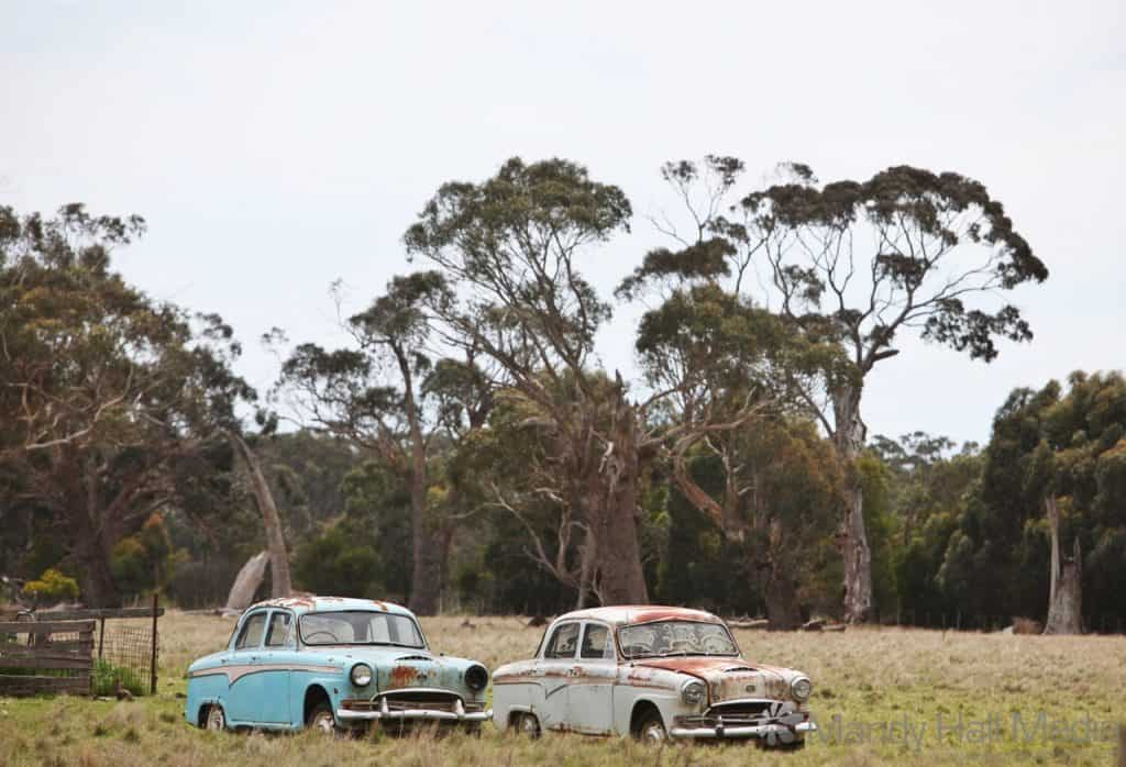 Old cars in a paddock