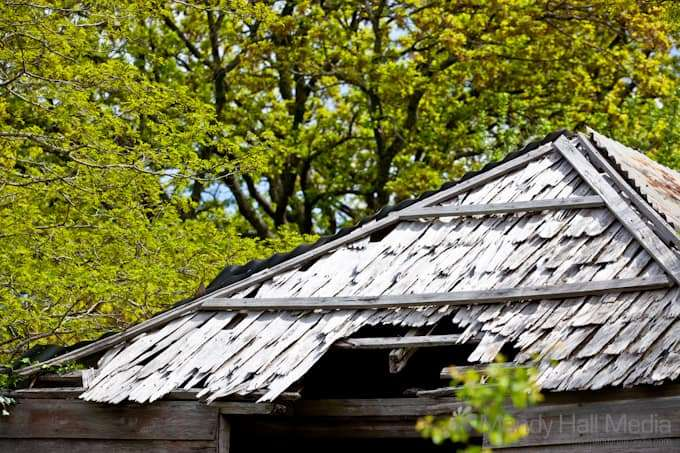 Roof of old shack on the side of the road