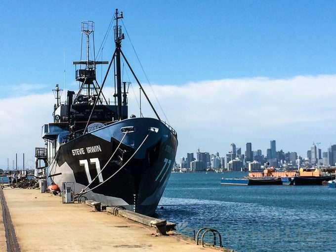 The Steve Irwin – Sea Shepherd