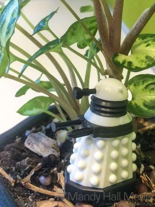 Dalek in the jungle