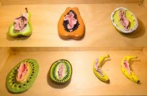 Ceramic fruit vaginas