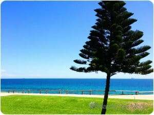 Cottesloe Beach, Perth. Before all the people turned up.