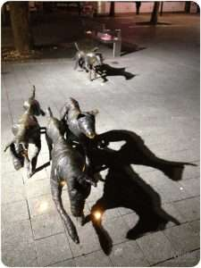 Mummified dogs in the Canberra mall. They look great at night.