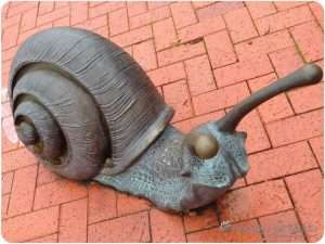 More snail sculptures from Canberra. Now they even have a wall.