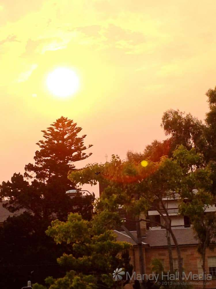 Scary sun in Sydney during the bushfires in October. This was taken in early afternoon, before sunset.