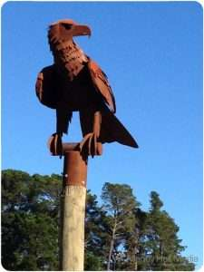 Rusty eagle in Woodend