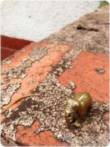 Elephant on the bricks