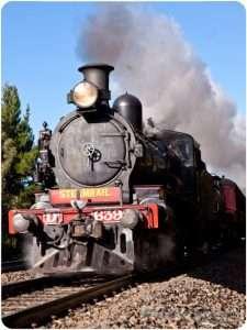 Steam train in Macedon