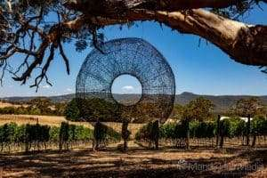Brigit Heller ' Threads ' at Art in the Vines at Hanging Rock Winery