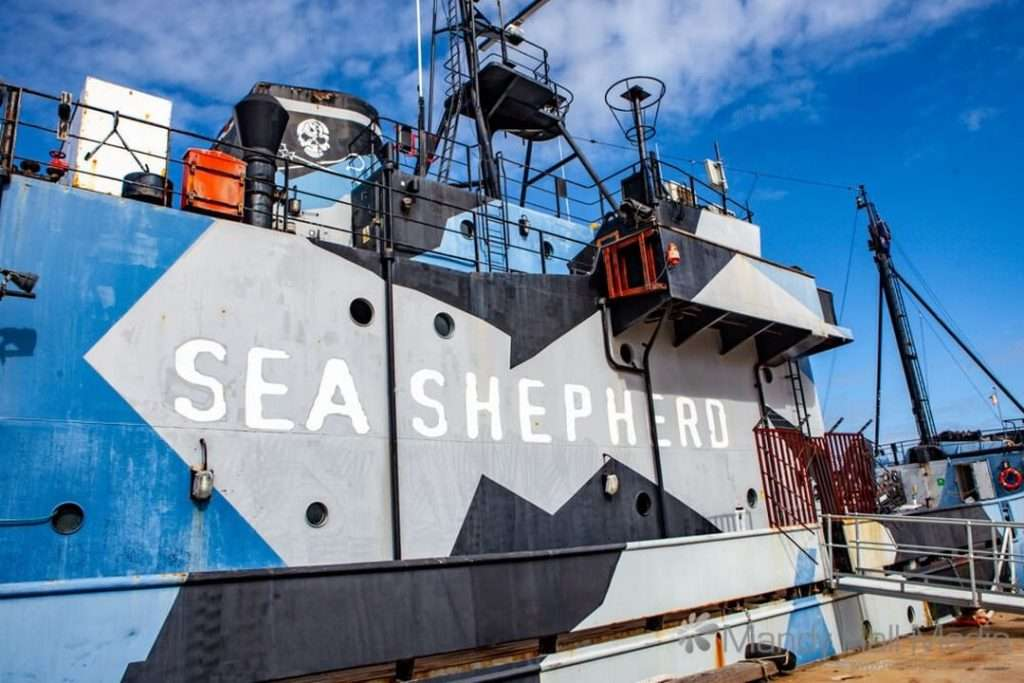 The Sea Shepherd in Williamstown