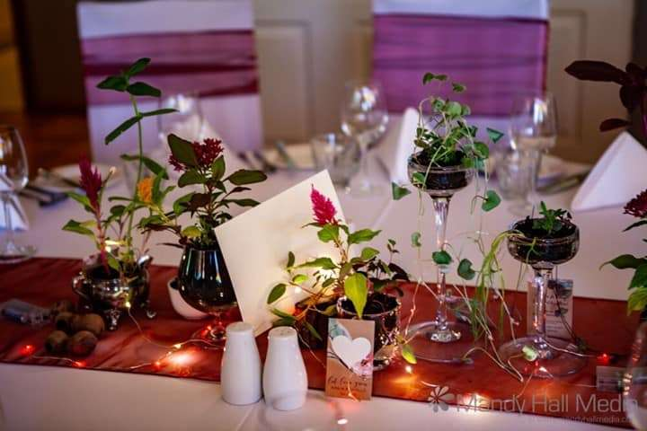 Seedlings as table centrepiece, lovely.